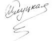 Ирина Cлуцкая - подпись